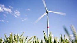 PB 1 image wind